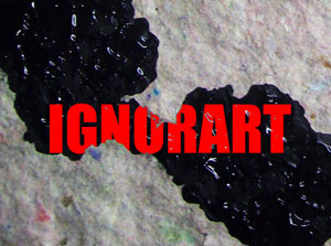 IGNORART